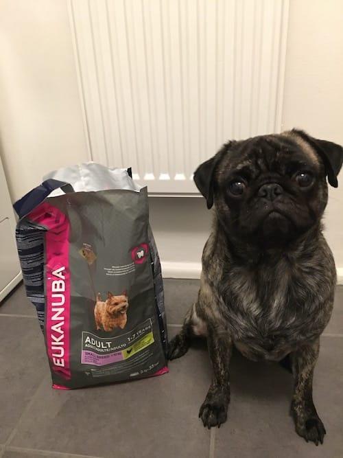 eukanuba-hundefutter-test