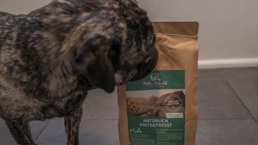 muellers naturhof hundefutter test