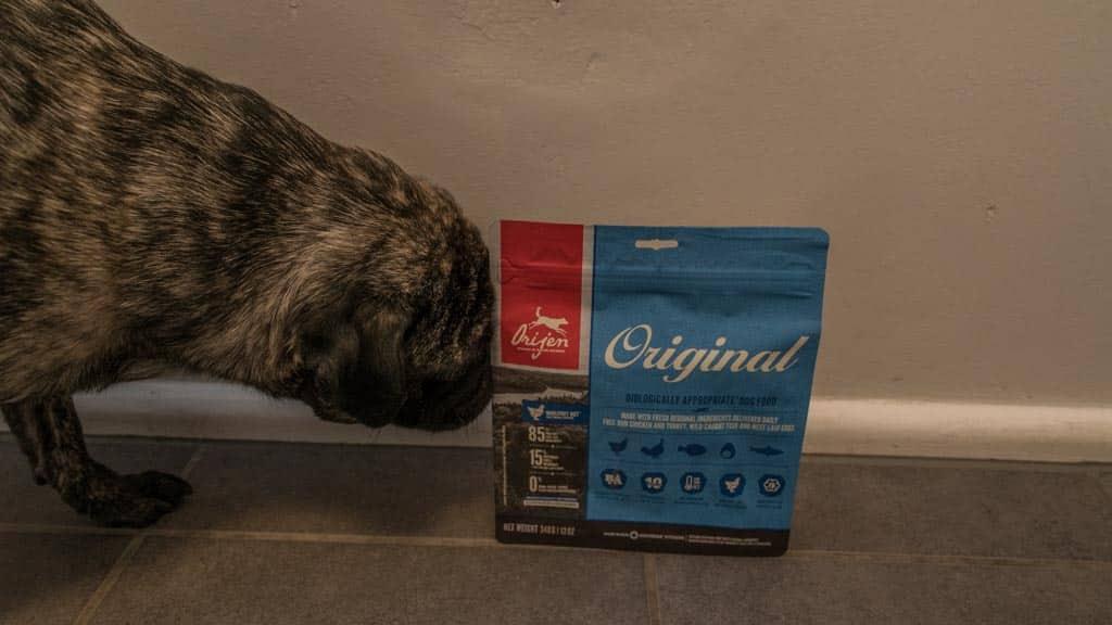 orijen hundefutter test