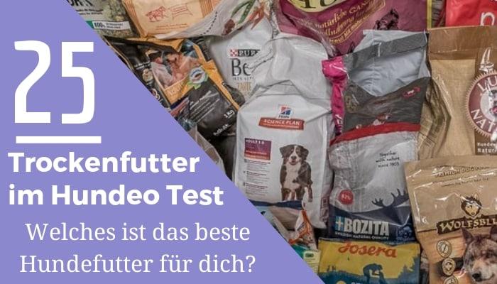 trockenfutter test