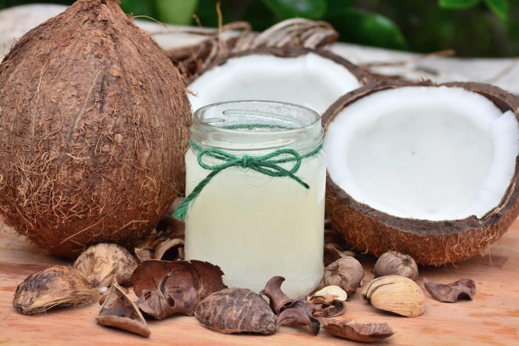 können hunde kokosnuss essen