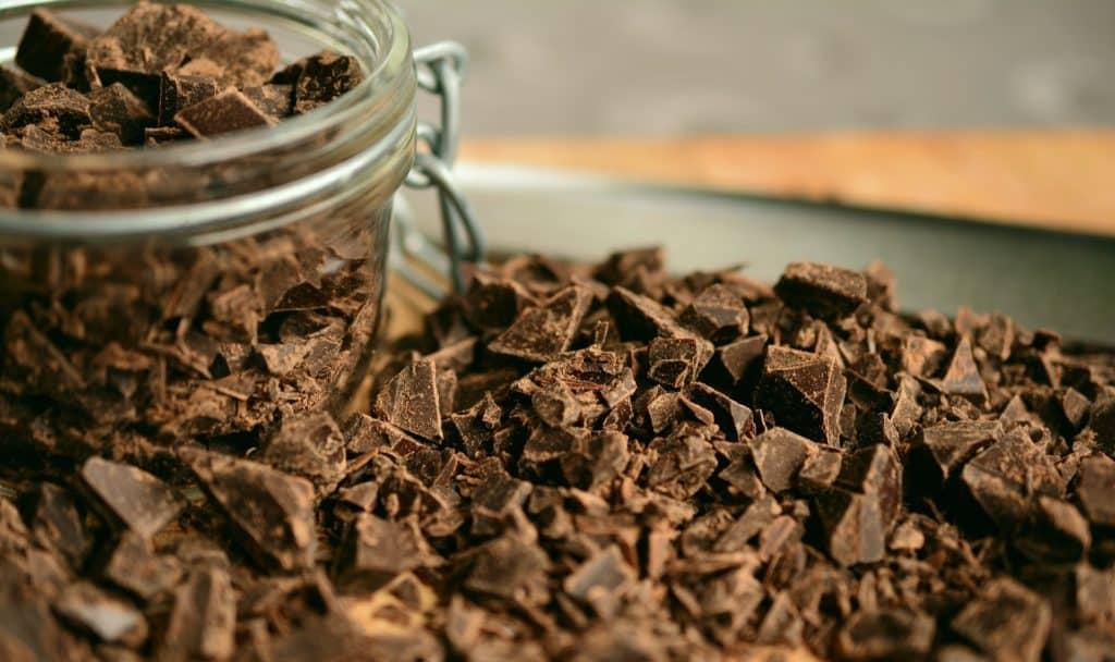 Mein Hund hat Schokolade gefressen (was tun?) 1