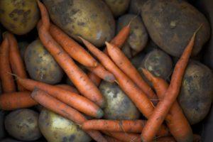 Kartoffel Karotte