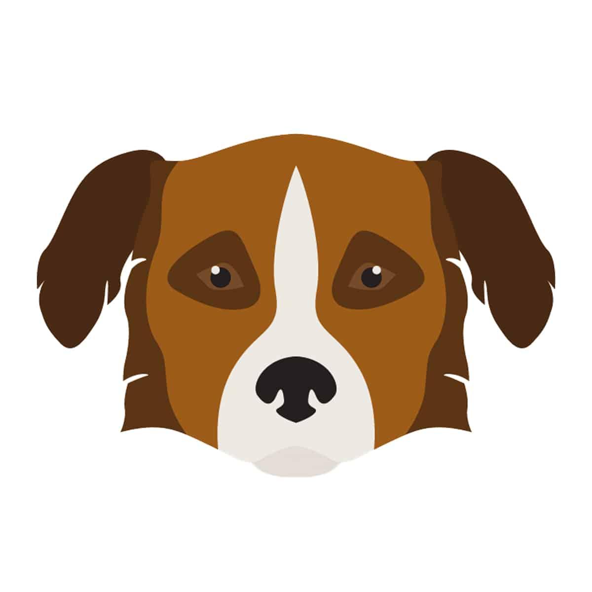 Aïdi Hund Geschichtsbild