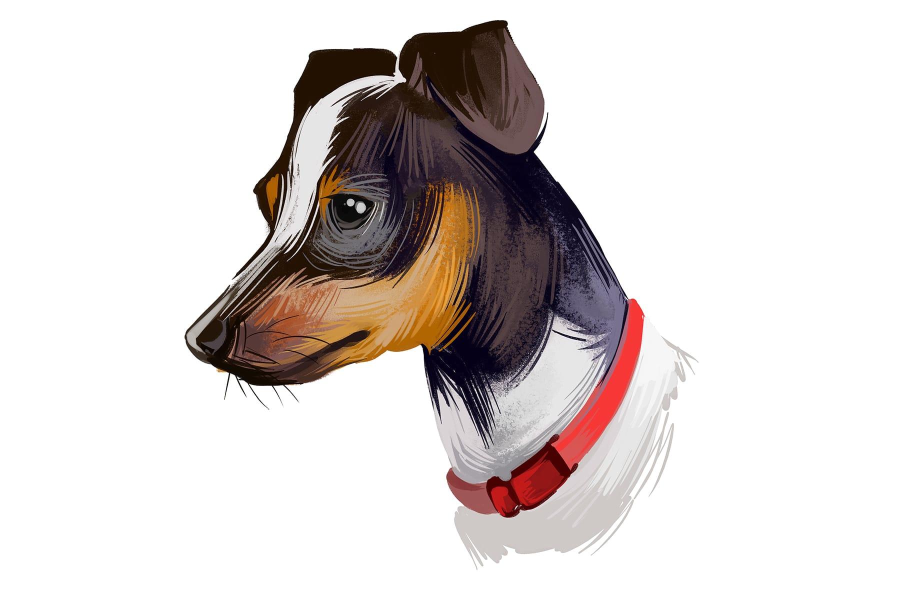 Japanischer Terrier Comic