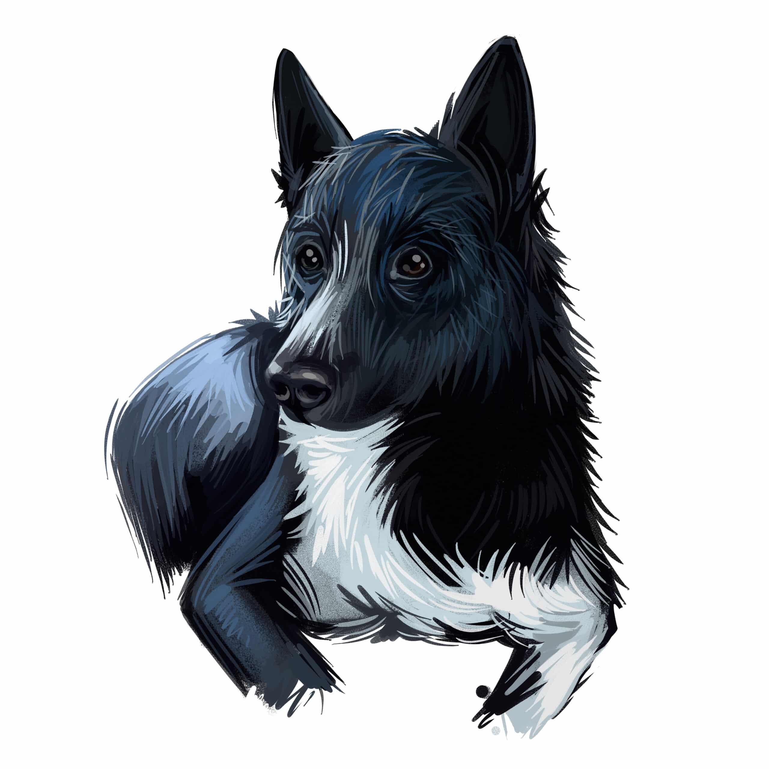 Laika Hund Geschichte