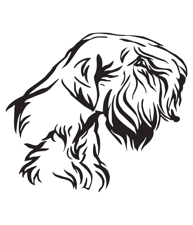 Sealyham Terrier Geschichte