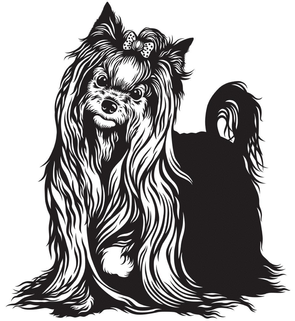 yorkshire-terrier_herkunft
