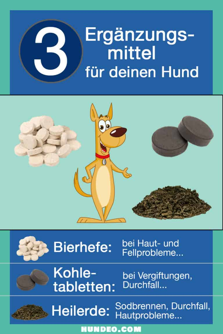 Ergänzungsmittel Hund