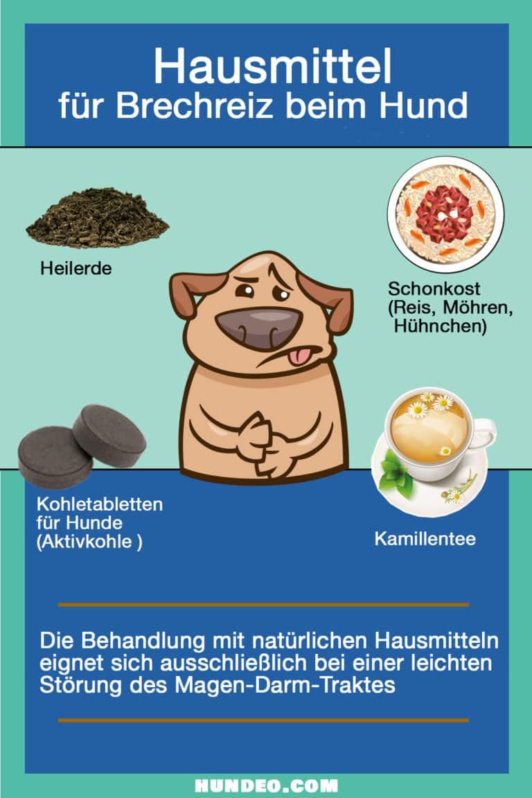 Hausmittel Brechreiz Hund