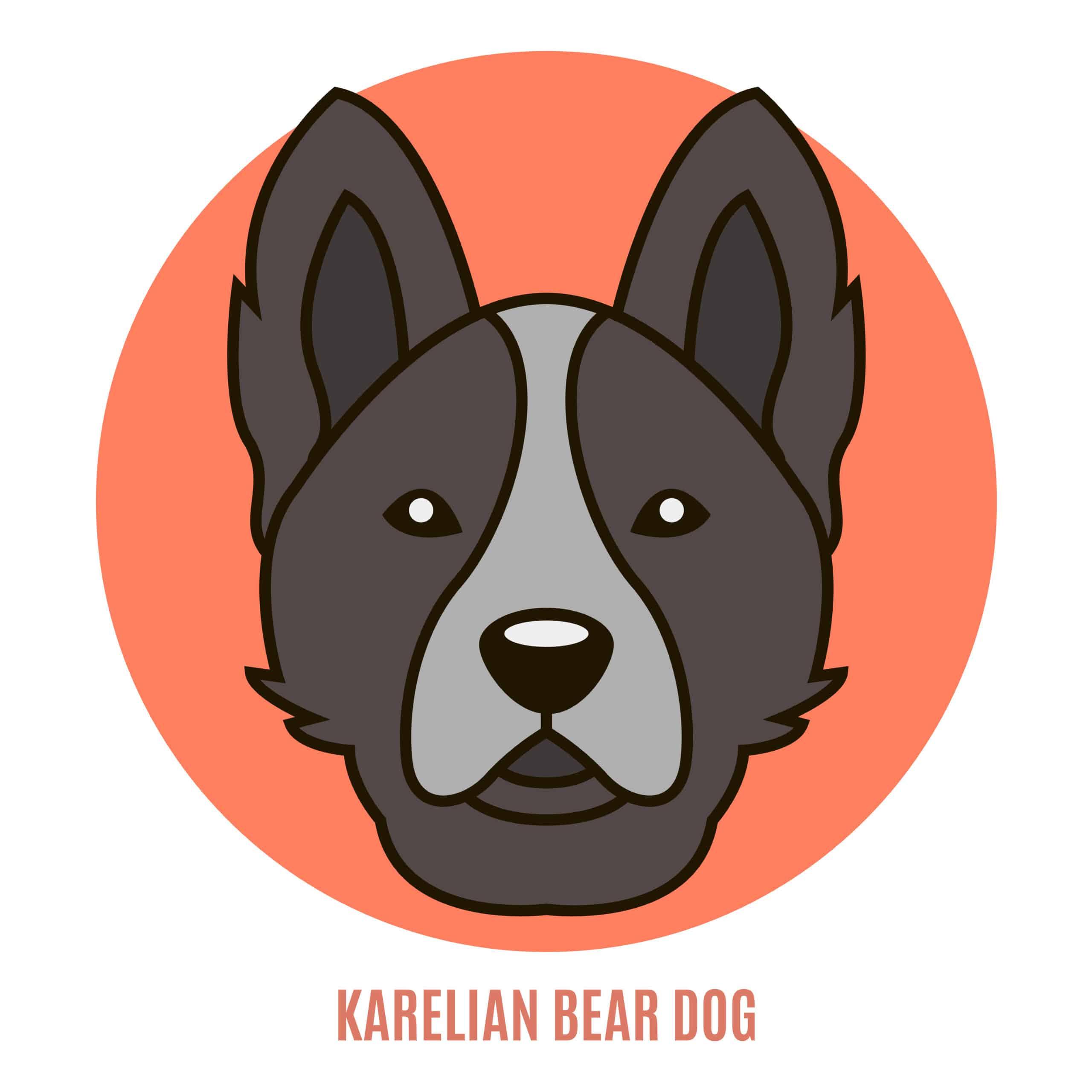 Karelischer Bärenhund Geschichte