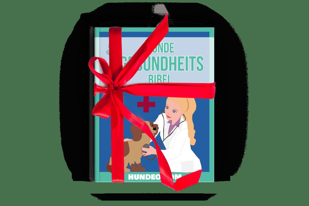 Hunde Gesundheitsbibel Partnerprogramm 4