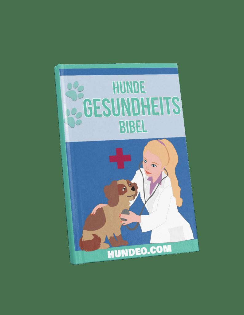 hunde gesundheits bibel 50 1