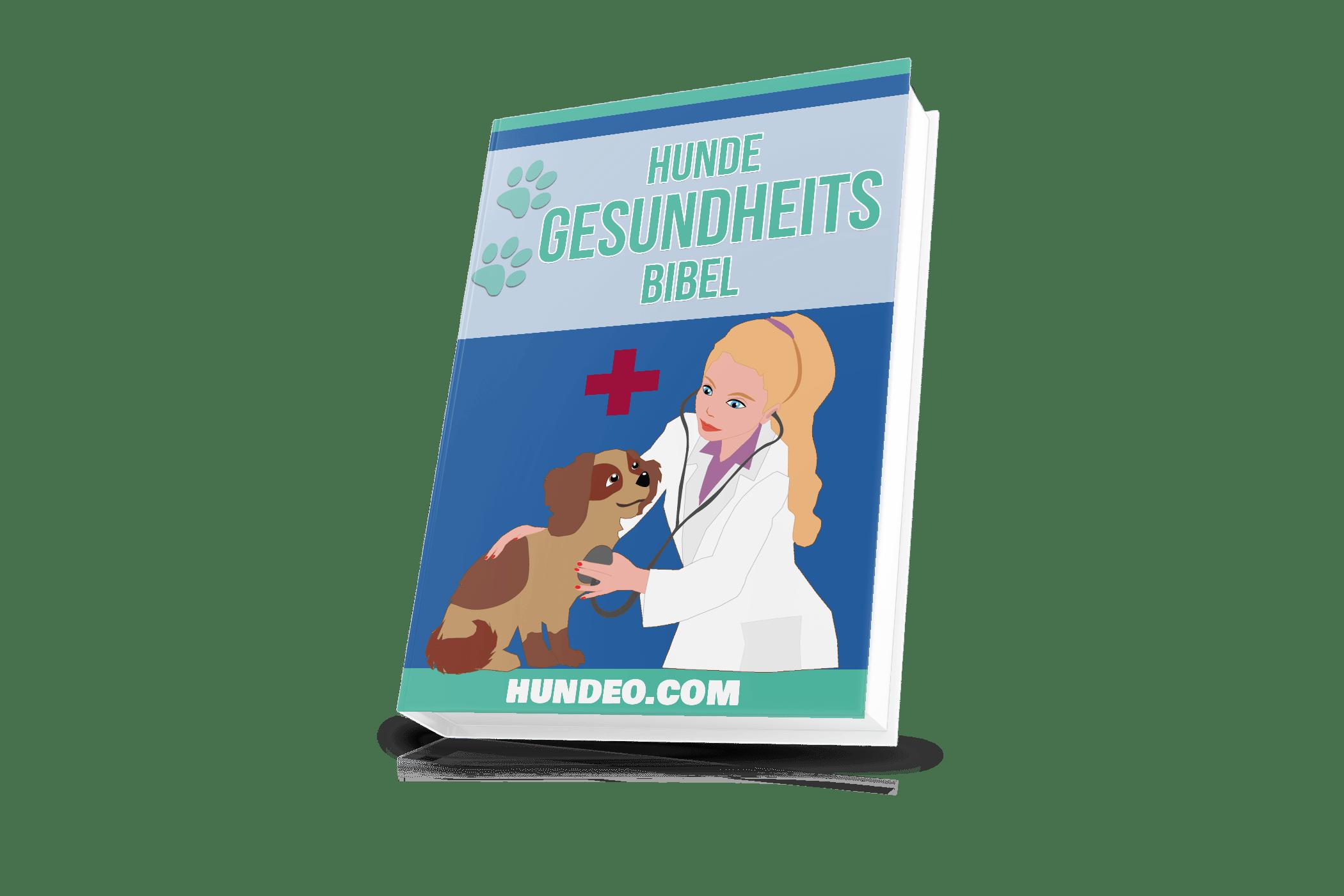 hunde gesundheits bibel 61 1