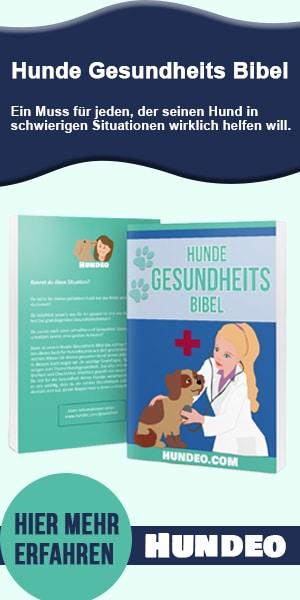 Hunde Gesundheitsbibel Partnerprogramm 1
