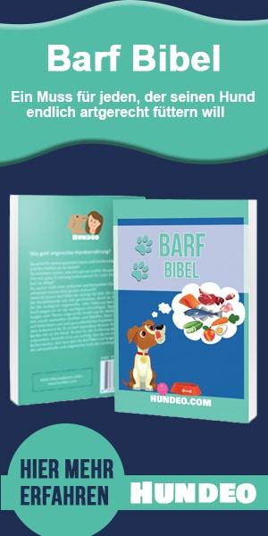 Barf Bibel Partnerprogramm 5