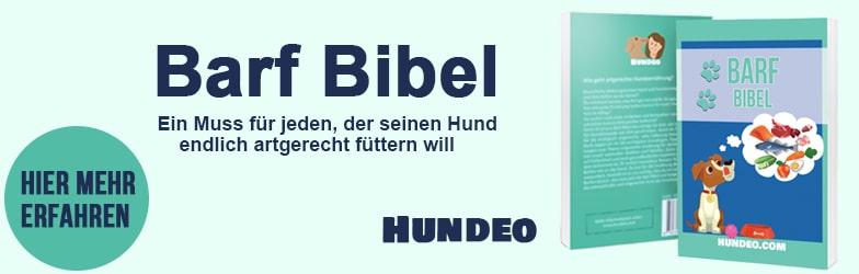 Barf Bibel Partnerprogramm 2
