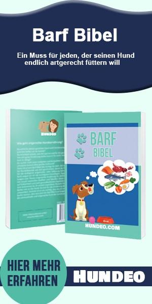Barf Bibel Partnerprogramm 6