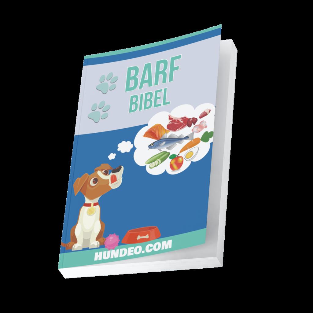 Barf Bibel 1