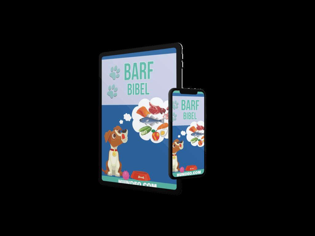 Barf Bibel - eBook Version 1