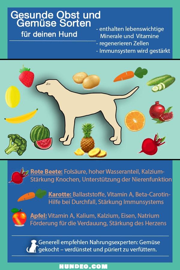 Grafik Obst und Gemüse neu neu