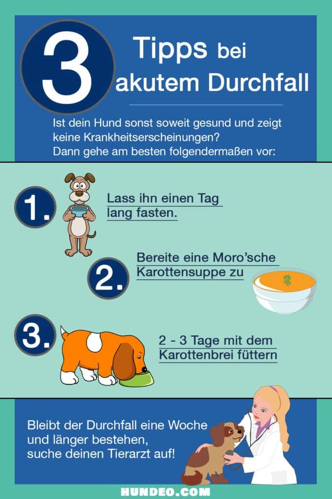 Tipps akutem Durchfall