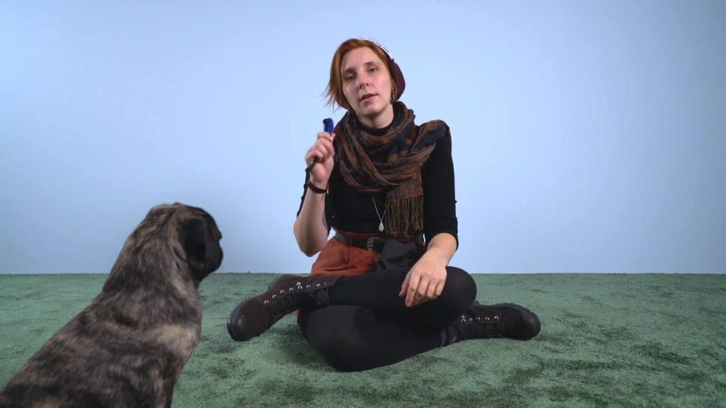 Was ist Clickertraining_ (Vorteile, Übungen und Tipps für deinen Hund) 1-26